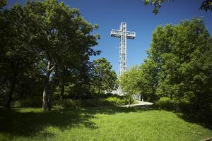 Mont-Royal cross