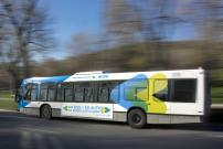 The STM begins work to open three reserved lanes