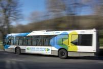 La STM annonce l'amélioration du service de bus pour l'automne prochain dans plusieurs secteurs de Montréal